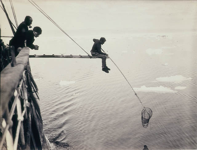 Hamilton hand-netting for macro-plankton from Aurora / by Frank Hurley